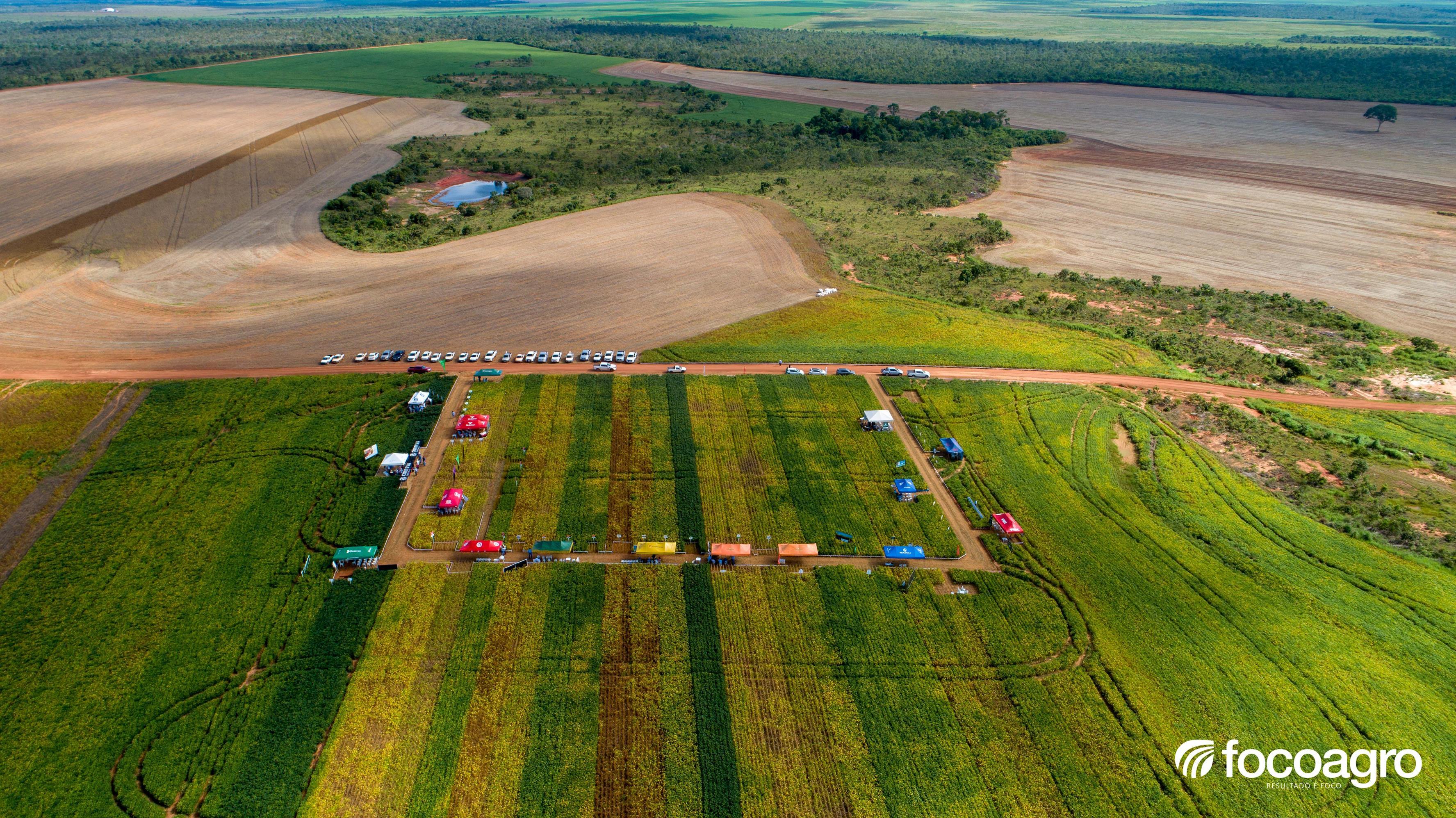 Dia de Campo da FOCOAGRO reúne quase 350 participantes em Guaraí; veja álbum de fotos