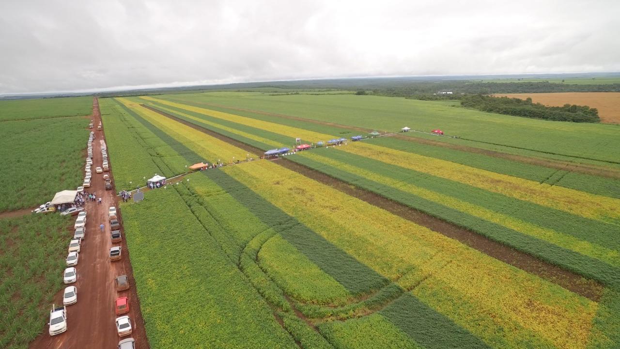 Jornada Tecnológica apresenta resultados de 23 variedades de soja cultivadas na região