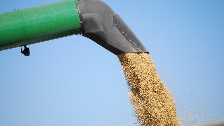 Operação policial prende suspeitos de sonegação fiscal no comércio de cereais em Guaraí