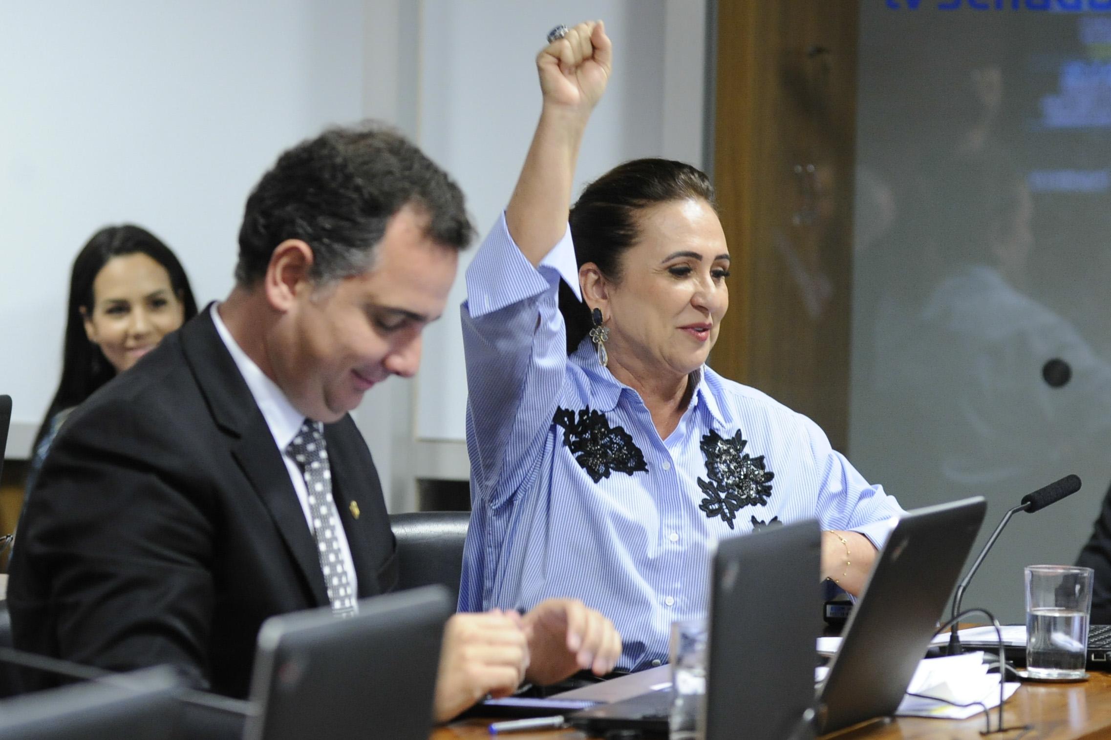 CCJ aprova relatório de Kátia Abreu que cria UFNT em Guaraí; pauta agora segue para votação