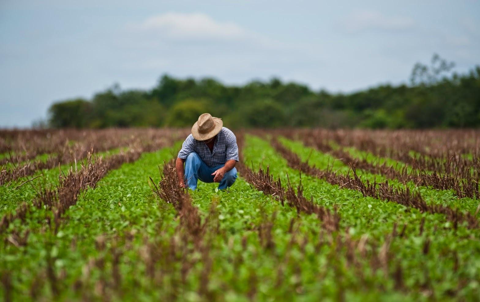 SINE oferta novas oportunidades de trabalho para caixa, vendedor interno e técnico agrícola