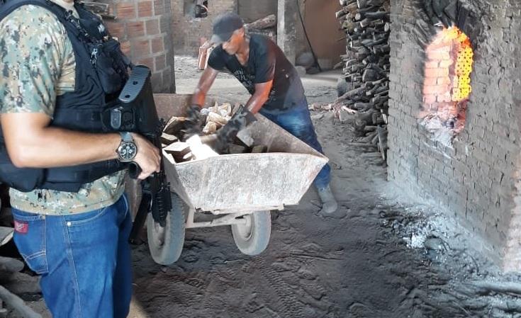 Polícia Civil incinera 120Kg de maconha em Guaraí; droga foi apreendida nos últimos 2 meses